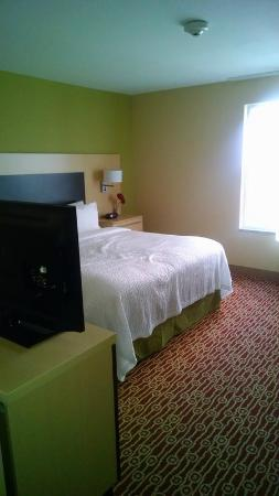 TownePlace Suites Chattanooga Near Hamilton Place : king suite