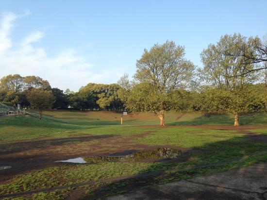 Kishine Park