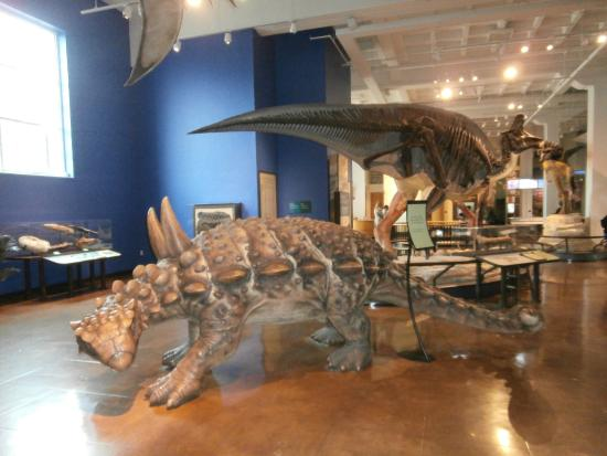 San Diego Natural History Museum Dinosaur Exhibit
