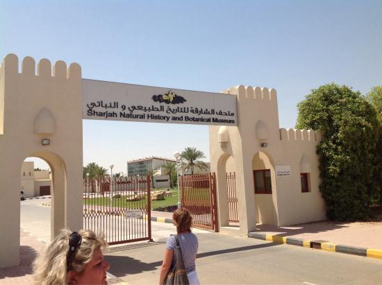 Sharjah Museum Of Natural History
