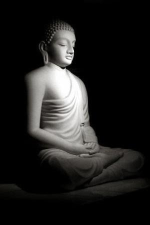 Awaken Inner Buddha Yoga Meditation Find