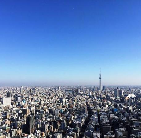 Mandarin Oriental, Tokyo: Tokyo Sky Tree view from guest room