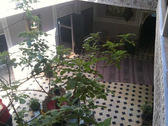 Riad El Farah: le jardin fleuri