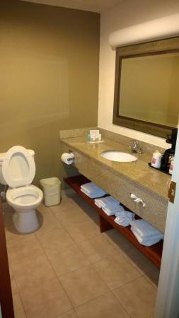 Comfort Suites Fort Pierce: bathrooms are nice