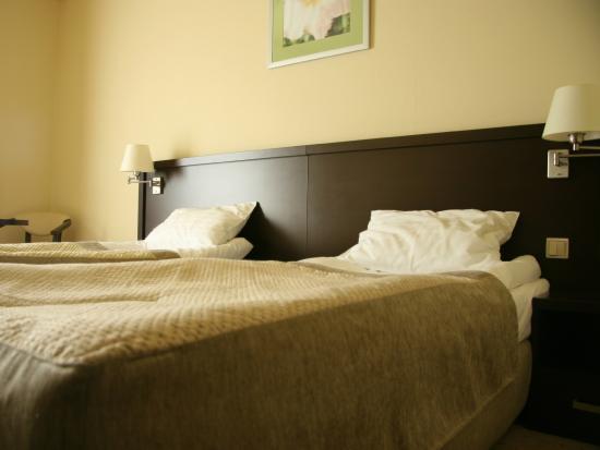 Hotel Elbrus Spa & Wellness: Pokój Standard