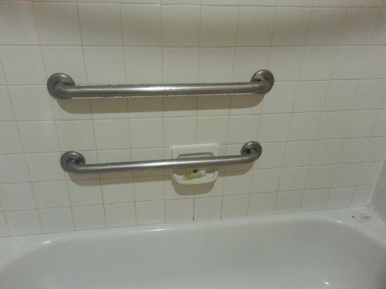 Auburn Red Lion Inn & Suites: Shower handrails that block soap and shampoo holder