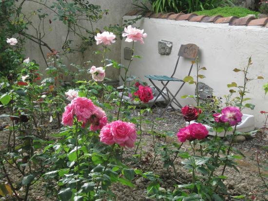 Les Renards : Rose garden