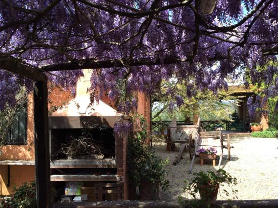 Agriturismo Marchiano: il barbecue