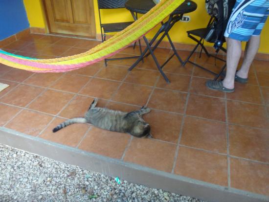 Villas Macondo: front porch of rooms