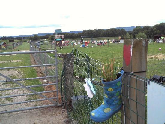 Robertson's The Larder Tomich Farm Shop and Childrens Farm: Juegos y detalle de reciclado de Botas de Lluvia