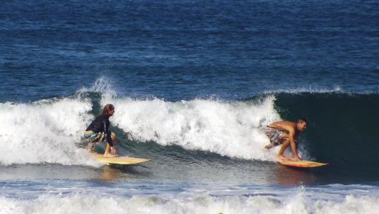 Costa Rica Surfing Company: Family wave