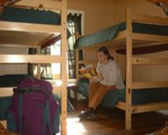 Grand Canyon International Hostel: Shared Dormitory