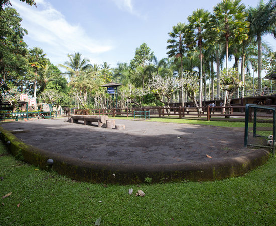 Show Arena at the Elephant Safari Park & Lodge