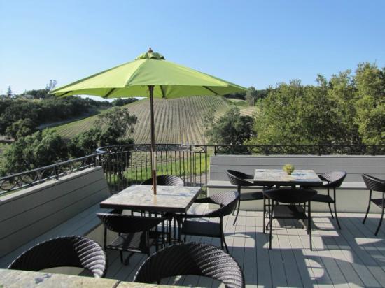 AronHill Vineyards: AronHill patio overlooking the vineyuards