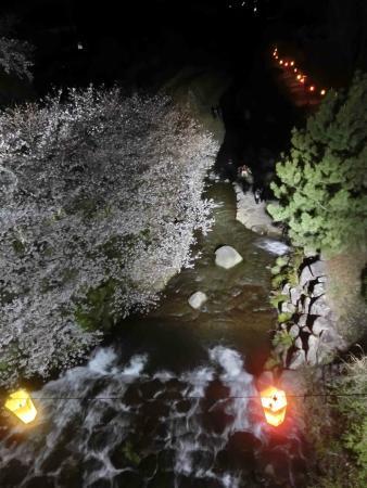 Tachibana Park