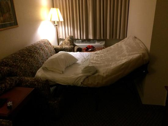 "BEST WESTERN PLUS Burlington Inn & Suites: This is the ""pull out sofa"" in a suite booked for 3 people."