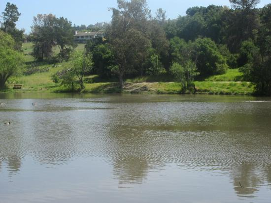 Ed Levin County Park (Spring 2015), Milpitas, CA