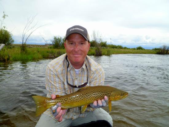 JHtrout Fly Fishing : Brown Trout