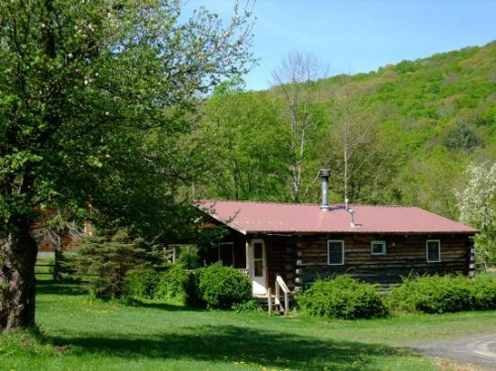 Big Indian, NY: Cabin 5 in Spring