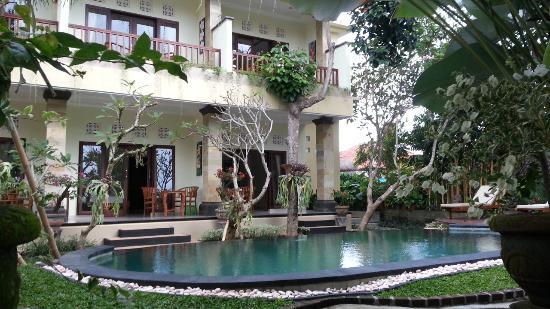 Padma Accommodation: The pool area