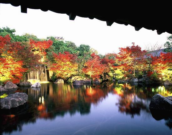 APA Hotel Himeji Eki Kita : 【好古園】紅葉会の情景