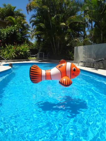 Noosa Gardens Riverside Resort Sunshine Coast: Nemo at Noosa Gardens