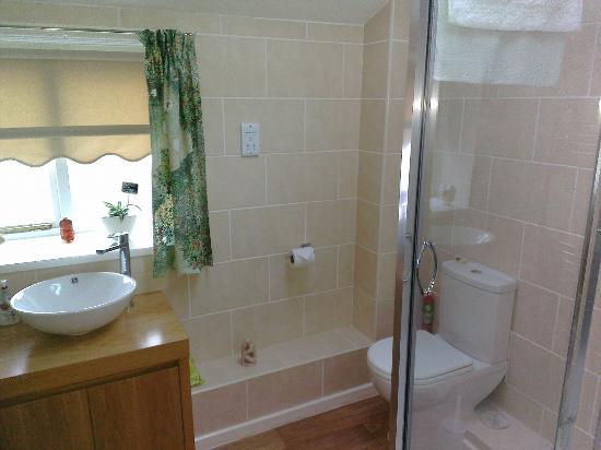 Angel Cottage B&B: Big bathroom and shower