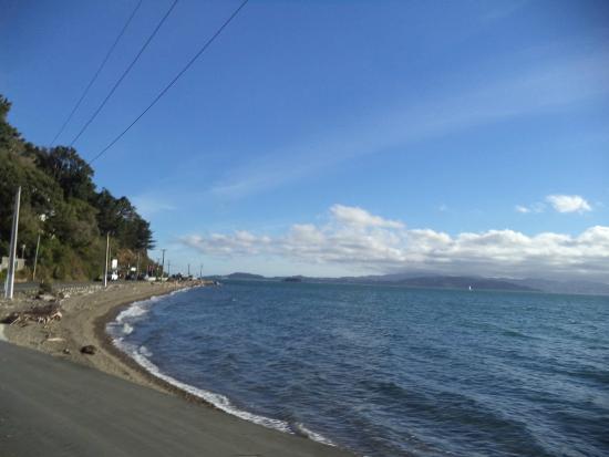 Days Bay : Marine Parade