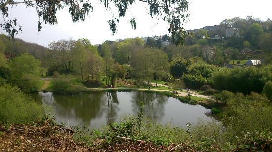 The prey - Picture of Jardin du Conservatoire Botanique National de Brest - TripAdvisor