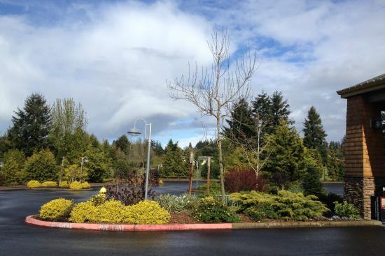 gardens in april picture of oregon garden resort silverton tripadvisor