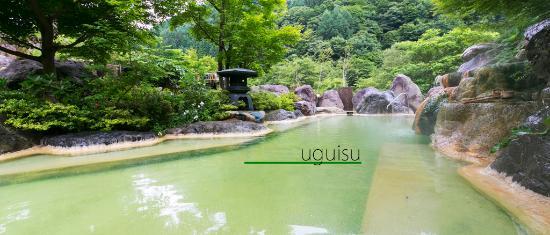 Okuhida Garden Hotel Yakedake: うぐいすの湯