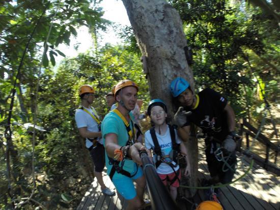 Cable Jungle Adventure: Высоко на дереве