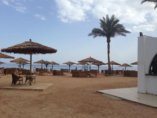 Dahab Resort : Пляж
