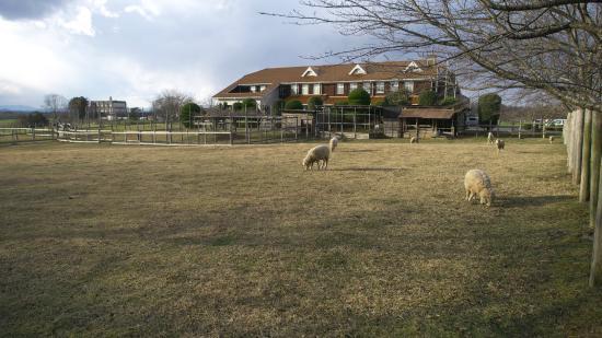 Shiga Prefecture Livestock Center Fureaihiroba