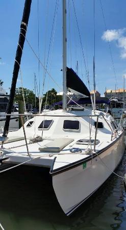 Jack Sailing Charters