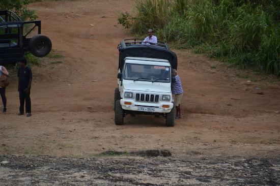 Fernando Adventure Safaries