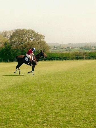 J F Polo Academy: Stick and Balling before Chukkas. to practice shots
