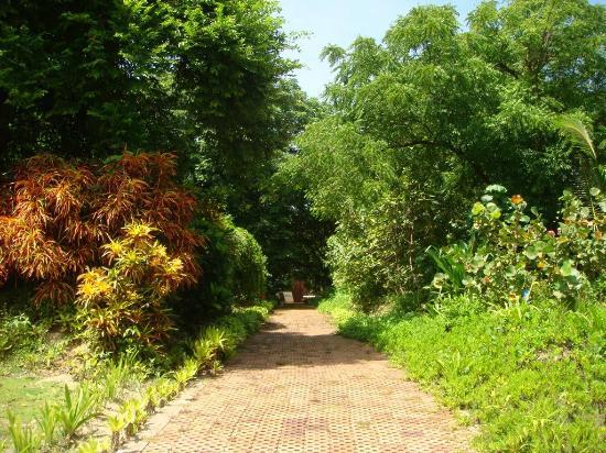 Jardín Botánico de San Andrés