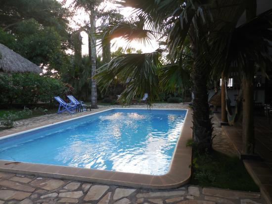 Hotel Mariposa: Pool