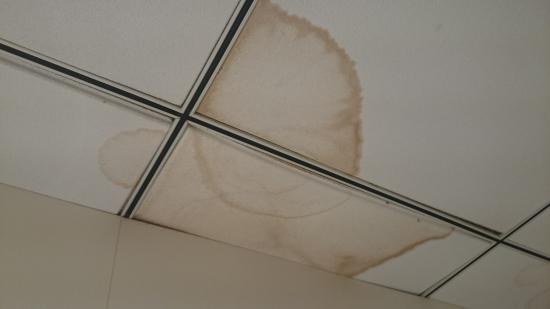 Daniya Alicante: techo del baño