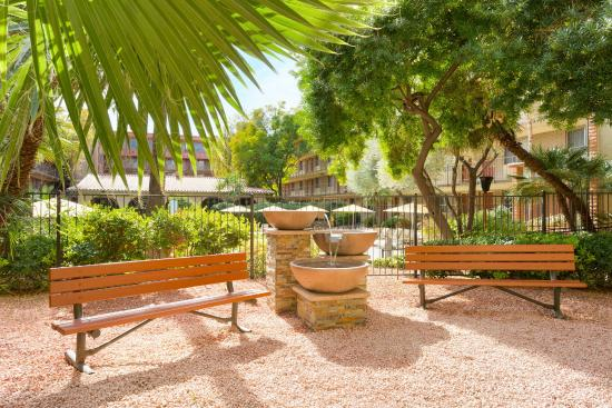 Embassy Suites by Hilton Phoenix Airport: Enjoy the shade and calming sounds of the water feature in our courtyard