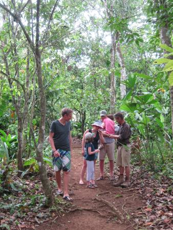 Rancho Raices de Osa : Tour