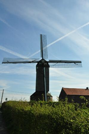 Aalbeke Windmill Kortrijk Belgium Top Tips Before You Go