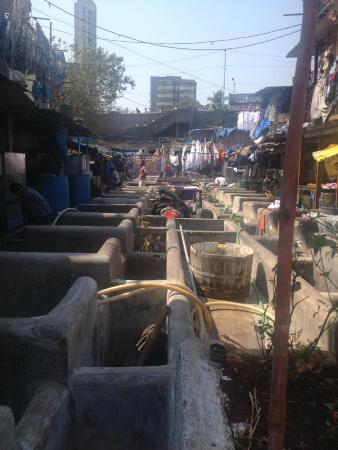 Raconteur Walks Mumbai: Mumbai Laundry