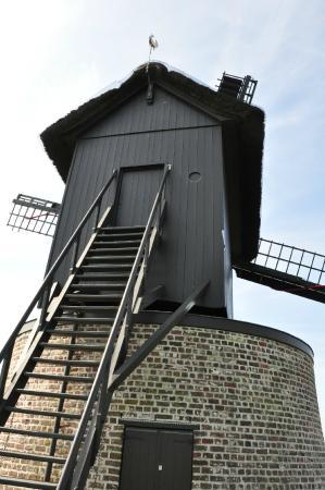 Preetjes Windmill
