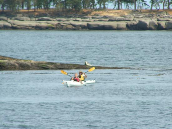 Campbell River, Kanada: Kayaking