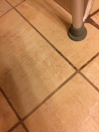 Quality Inn & Suites Shippen Place Hotel: Hair on our bathroom floor