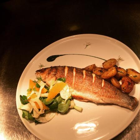 Harbour fish and grill newquay restaurant reviews for Fish and grill