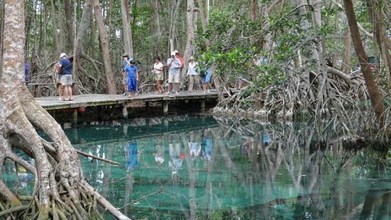 Circuito Ojo de Agua Baldiosera: Crystal clear spring feed water