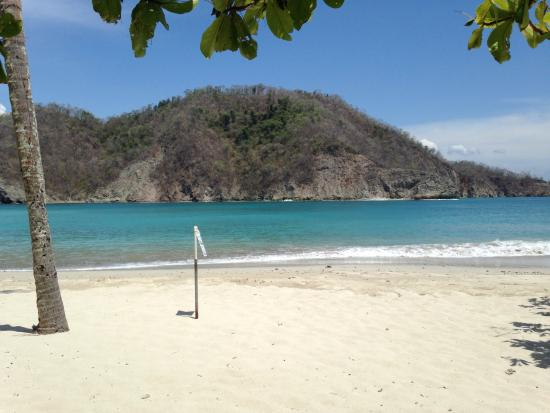 Bahia Rica Adventures : Loved it